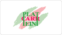 plat_carr_peint_viec1